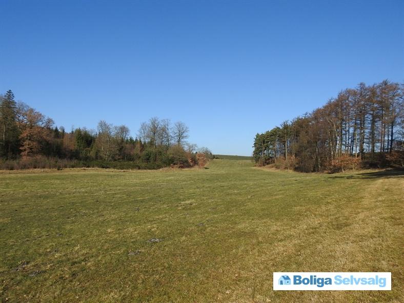 Langebakke 9, Gl. Rye, 8680 Ry